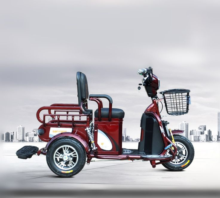 Double adult tricycle
