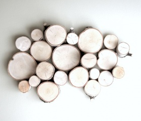 White Birch Forest Topography/......art for the wall