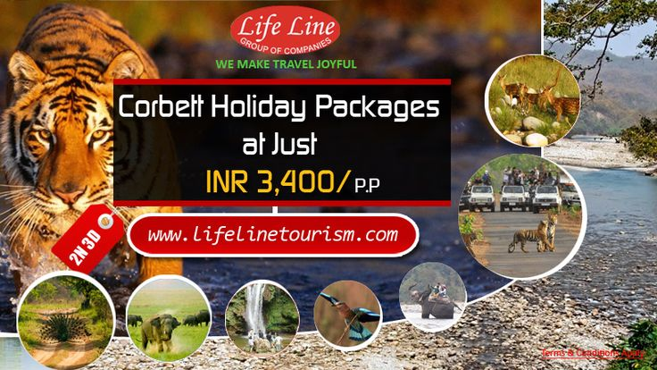 Book Corbett Tours & Travel Packages at Life Line Tourism Pvt Ltd Just INR 3400 Per Person