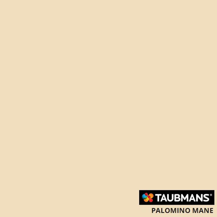 #Taubmanscolour #palominomane