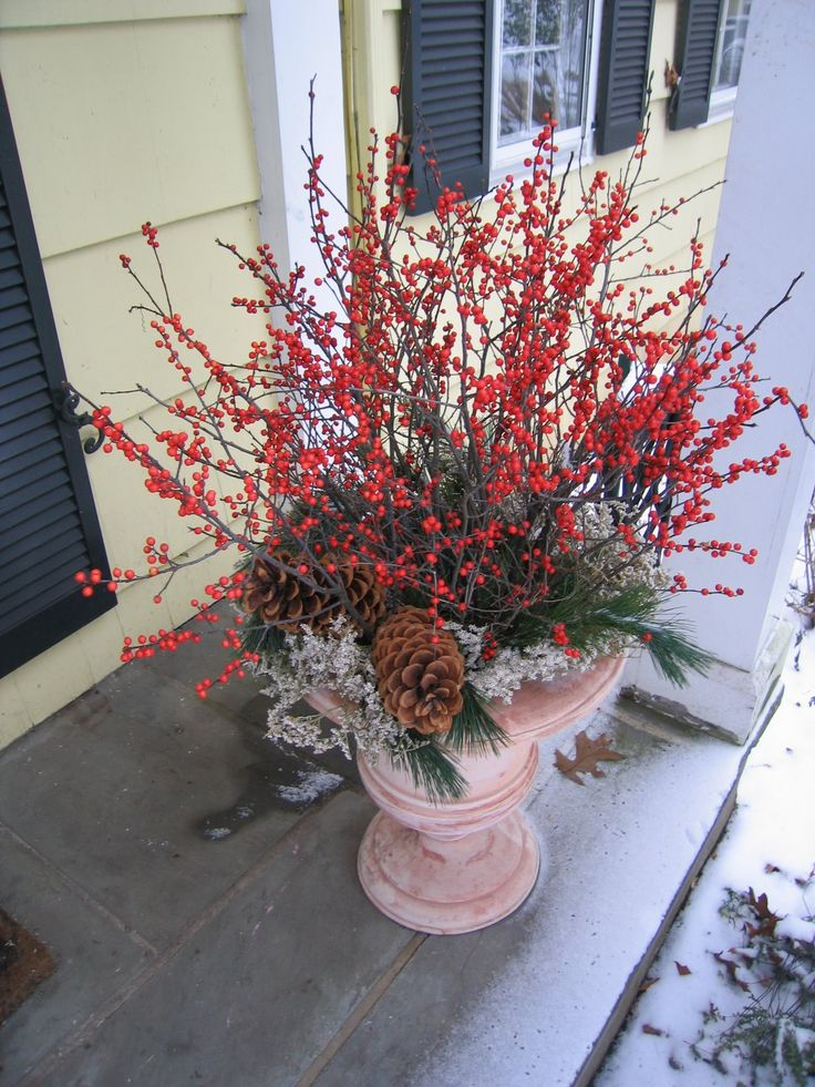 17 best images about plants for winter containers on pinterest gardens the winter and - Winter container garden ideas ...