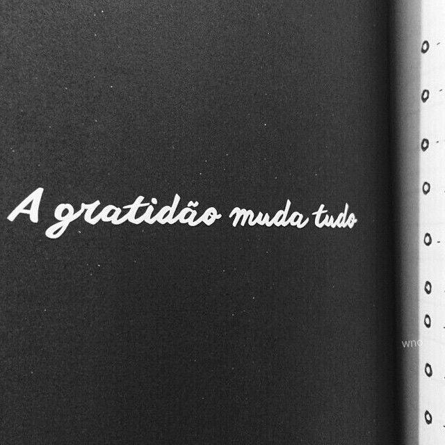 A gratidão muda tudo...