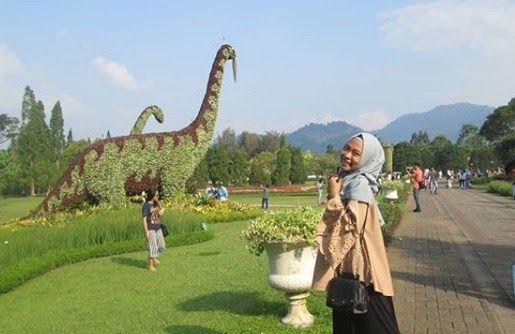 19 Gambar Pemandangan Di Taman Bunga Nusantara Keindahan Taman Bunga Nusantara Cianjur Tempat Cantik Satu Ini Bisa Menjadi Tujuan W Di 2020 Pemandangan Gambar Taman