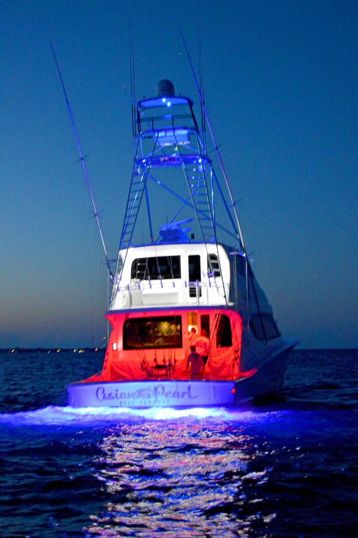 Best Ultimate Fishing Boats Images On Pinterest Boats - Blue fin boat decalsblue fin sportsman need some advice pageiboats