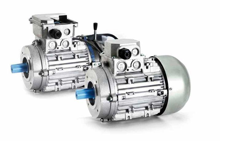 Motore elettrico asincrono con rotore in cortocircuito? Ecco tutto quello che c'è da sapere