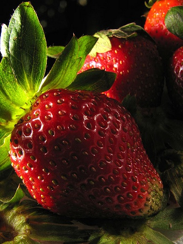 strawberry field forever...