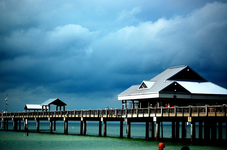 35 best the sunshine state images on pinterest florida for Pier 60 fishing