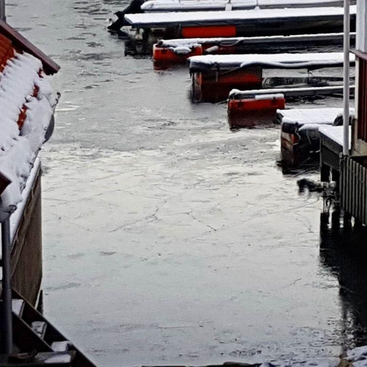 Vinter!  #vinter #is #frost