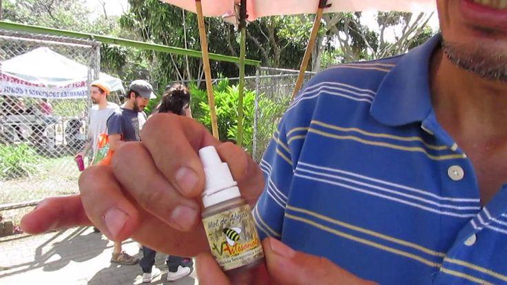 Carlos Vargas nos presenta http://elagricultoreterno.com/carlos-vargas-meliponicultura/ Salvemos a las abejas con la apicultura de abejas solitarias sin agui...