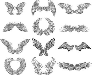 Drawings of Angel Wings to Inspire Your Angelic Art: Drawings of Angel Wings