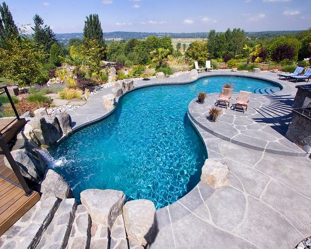 1000 images about awesome inground pool designs on for Different pool designs