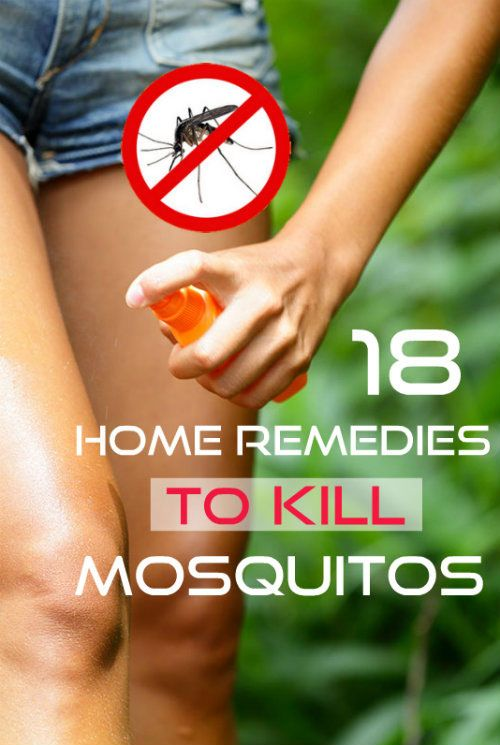 18 natural ways to keep mosquitoes away check it out Ways to get rid of mosquitoes in your house