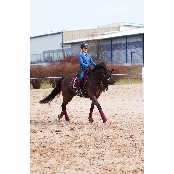 WHO RUN THE WORLD❓GIRLS❣️❣️ auf uns Ladys #dylaras #riderfashion #TeamRF #love #happybobbl #happyathlete #weltfrauentag #worldwomensday #eskadron #eskadronlove #eskadronsuchti #eskadronoutfit #eskadronheritage #kepitalia #superiorhelmets #pikeurfashion #deniroboots #roeckl #lovemygirl #lookatmyhorse #horseofig #seelenpferd #herzenspferd #dressur #dressage #dressurpferd #dressurreiten #horsebackriding