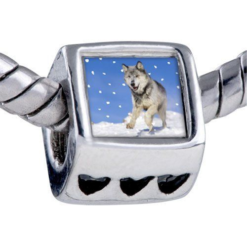 Pugster Bead Running Wolf Photo Bead Heart Charm Bead Fits Pandora Bracelet Pugster. $12.49. Bracelet sold separately. Hole size is approximately 4.8 to 5mm. It's the photo on the heart charm. Unthreaded European story bracelet design. Fit Pandora, Biagi, and Chamilia Charm Bead Bracelets