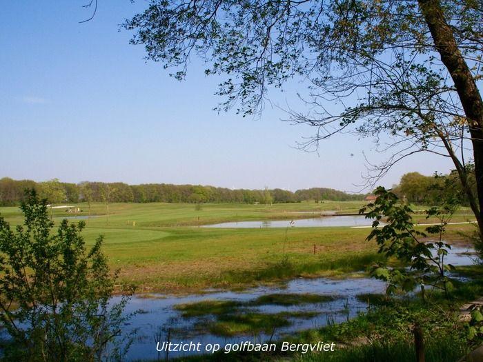 Betonnen Boshuis vakantiehuis Brabant met turks bad I Special Villas