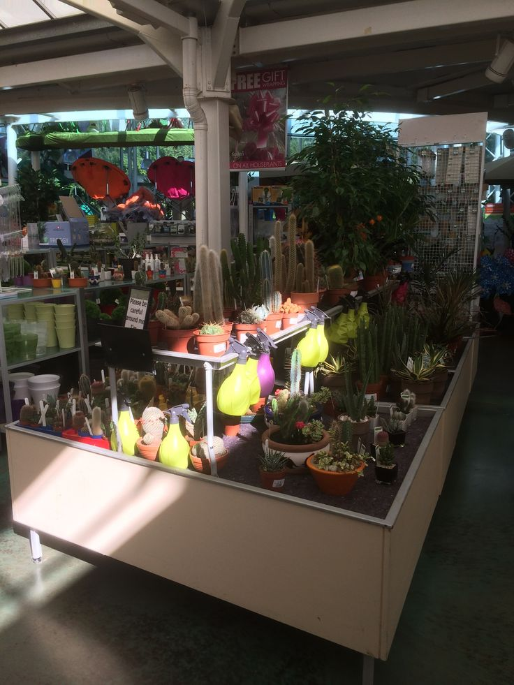 Squires - Garden Centre - Garden - Home Decor - Layout - Landscape - Lifestyle - Visual Merchandising - www.clearretailgroup.eu