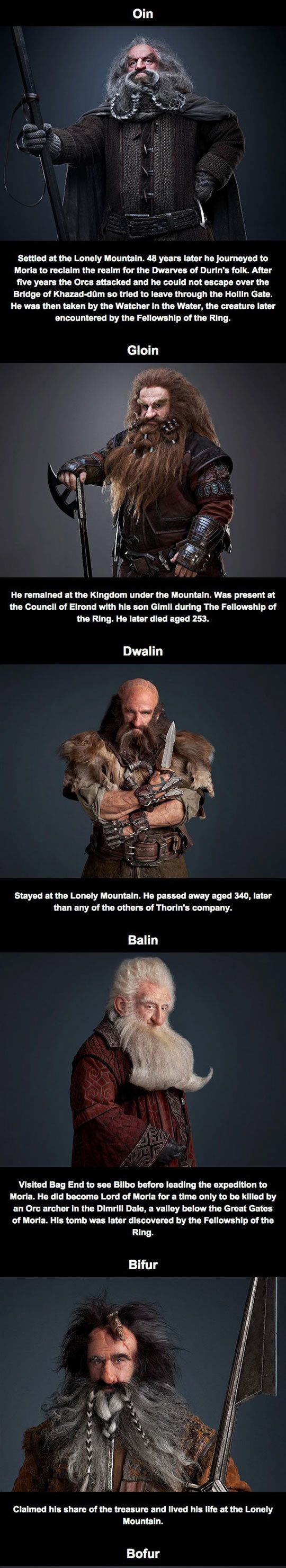 What Happened To The Other Dwarves After The Hobbit? Information taken from LOTR, Appendices and other writings.