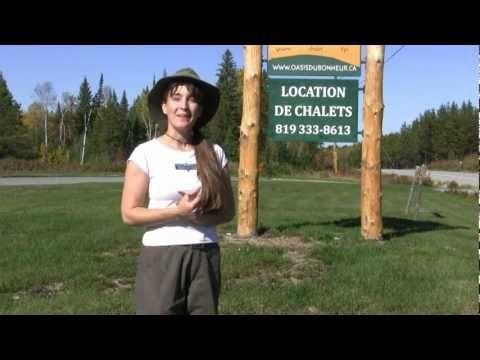 Visite guidée virtuelle - Oasis du Bonheur - YouTube