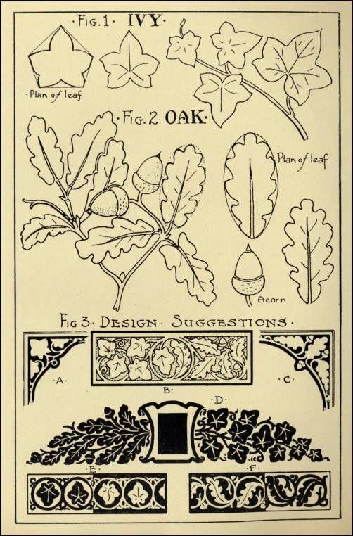 """stone carving patterns-Oak & Ivy Patterns in """"Monumental Drawing and Lettering: The Oak and Ivy in Applied Ornament"""" (1926)"""