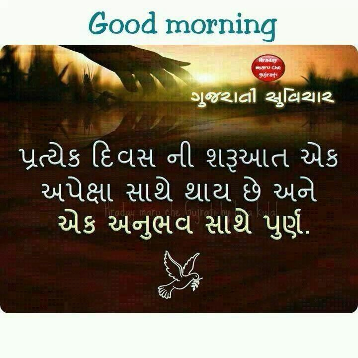 Nice Person Quotes In Hindi: 168 Best Gujarati-Hindi Special..:-) Images On Pinterest