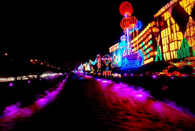 Day 169:  Festival of Lights, Medellin (Colombia)