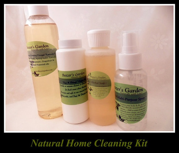 Natural cleaning products home sampler set choose your items for Sustainable home products