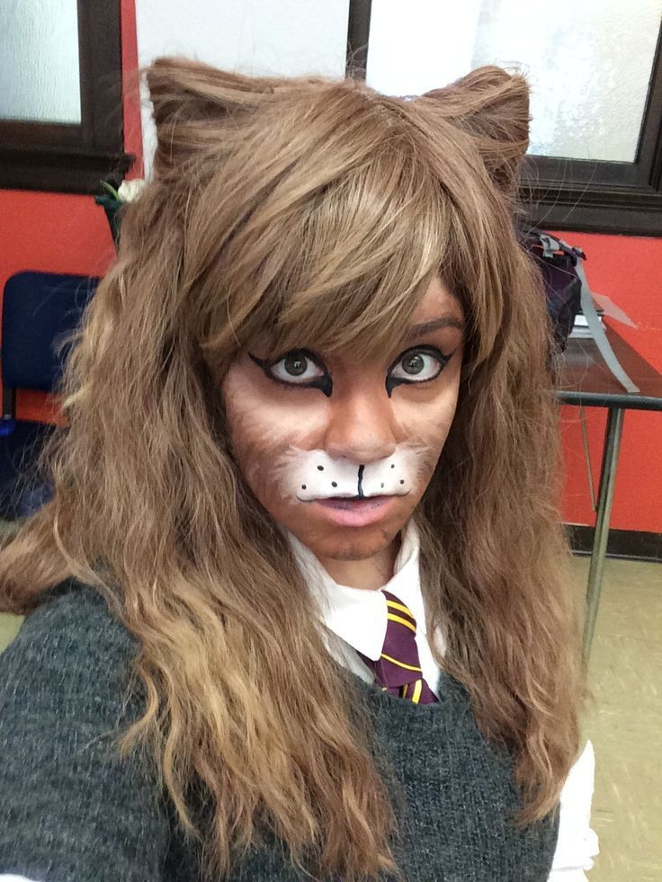 Hermione turned cat Harry potter halloween costumes
