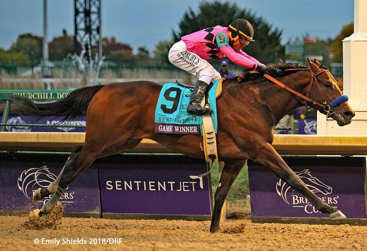 Game Winner Wins The 2018 Breeders Cup Juvenile
