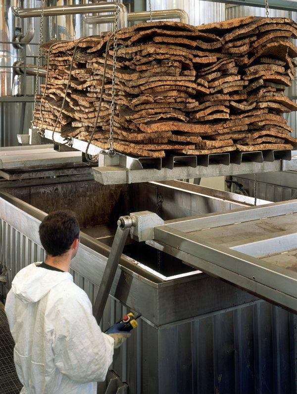 Bouillage - Amorim Cork - Portugal