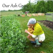 Our Ash Grove