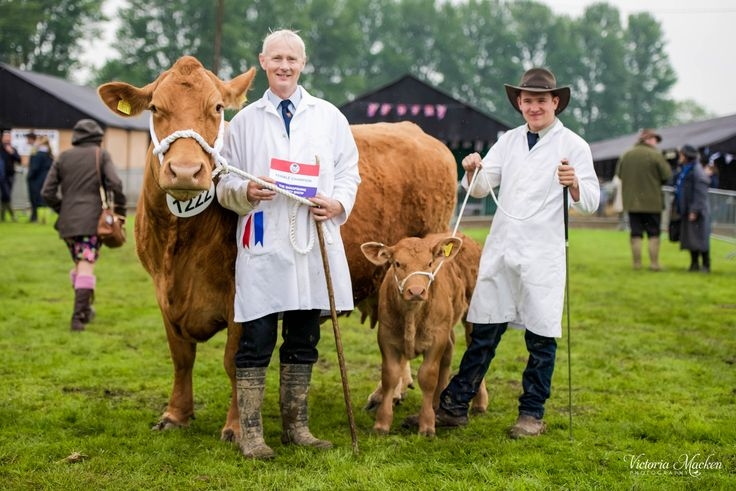 Shropshire County Show 2014. One of the oldest surviving agricultural shows in the county. #ShropshireEngland