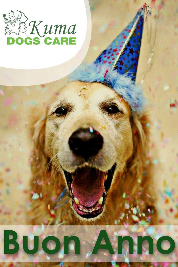 Buon Anno da Kumadogscare!  http://kumadogscare.com/home/270-kumadogscare-cuscino-keep-calm-relax.html  Seguici sul nostro shop online www.kumadogscare.com  Copyright 2016 - Kumadogscare  Graphics and movie edited by:Pigikappa.com  #cani #toilettatura #kuma #dogs #shop #kumadogscare #gatti #cats #pets #natale #christmas #regalo #present #box #puppies