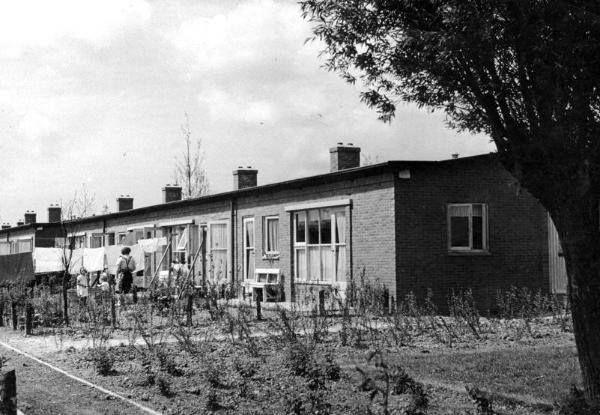 Wielewaal Rotterdam-Zuid 1950