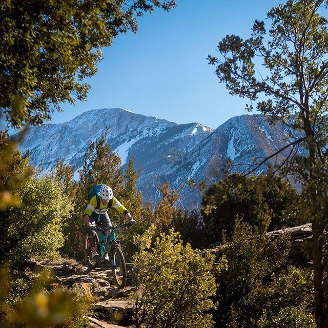 Laurel Hill Mountain Bike Trails