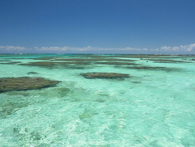 Maragogi - Alagoas  Maragogi está localizado na Costa dos Corais - Costa dos Corais - 130 km de contínuas vida recifes tropicais na costa do Nordeste do Brasil .