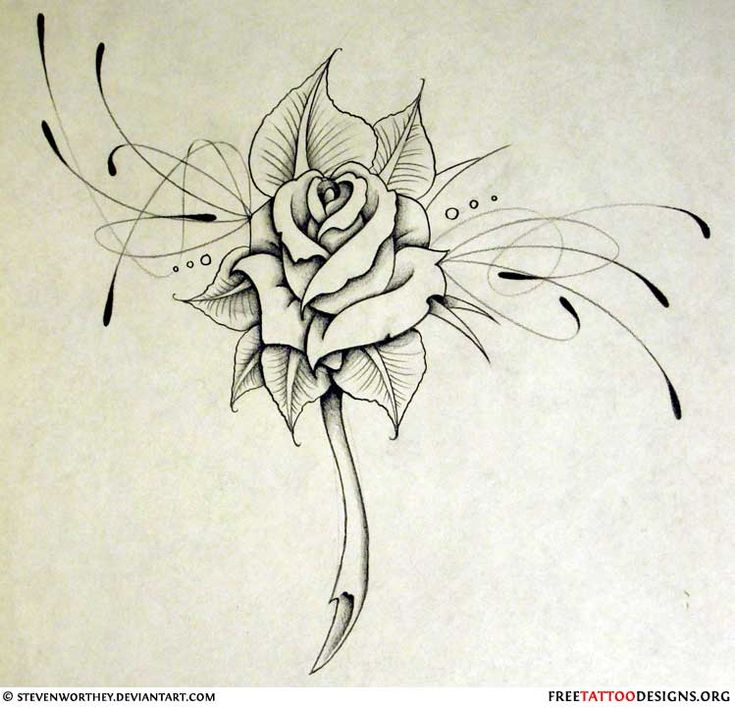 Replace the flower with a dolphin for a lower back tattoo