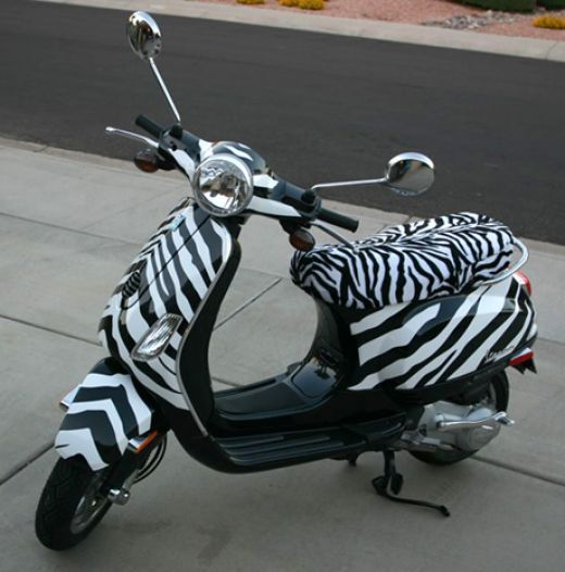 Zebra Accessories for Your Home and Workspace