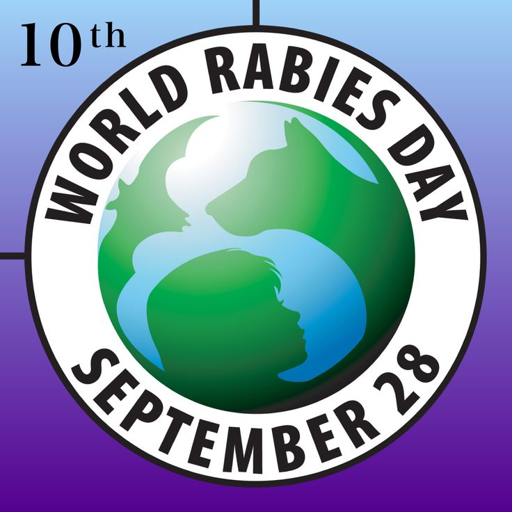 Rabies - 28 September 2016 Wednesday 28th September is World Rabies Day. It is estimated that worldwide at least 55 000 people die of rabies every year. Rabies cases in humans occur more commonly amongst children.  http://www.vet-portshepstone.co.za/rabies-28-september-2016/