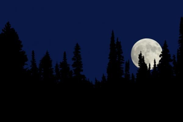 What is a blue Moon? - Contrary to popular belief, a blue moon is not actually blue in color. Blue moon is a term that is used to describe the third full moon of a season that has four full moons.