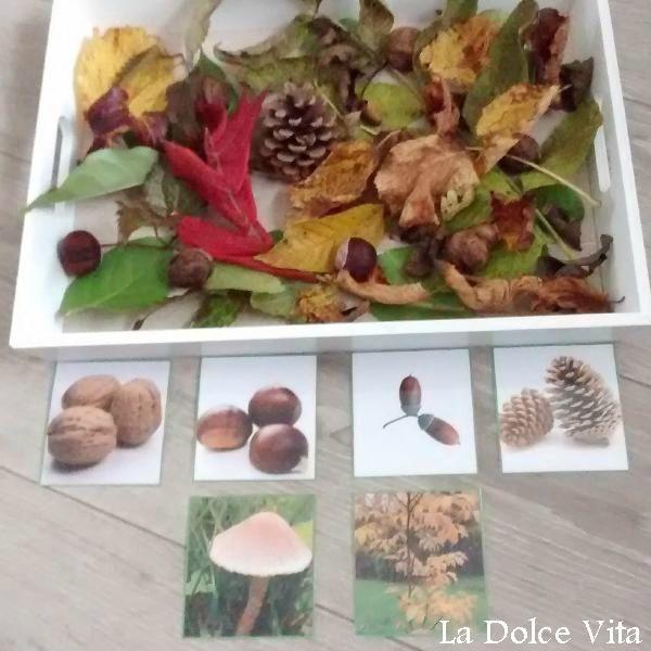 plateau sensoriel automne                                                                                                                                                                                 Plus