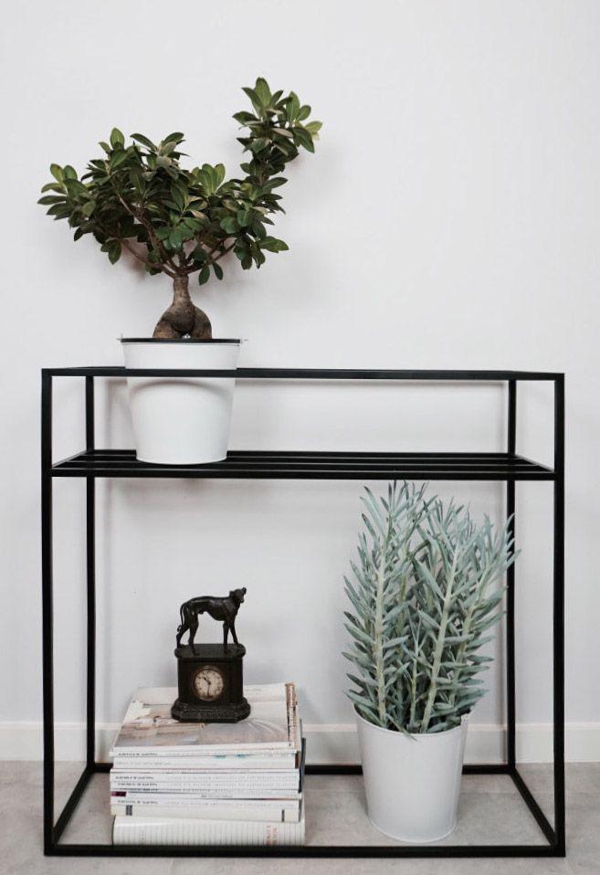 Plant and flower organizer