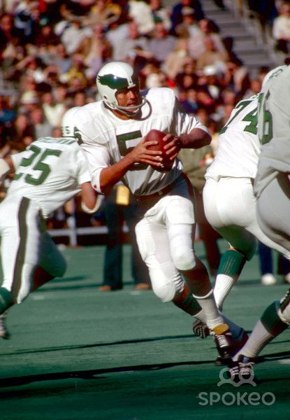 Nov 1, 1973. Philadelphia Eagles quarterback #5 Roman Gabriel in action during the 1973 season.