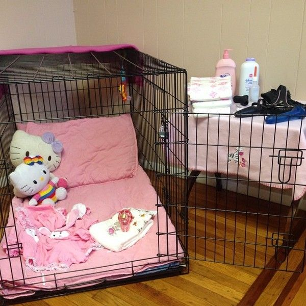 Little's cage. Little play mixed with confinement and pet play