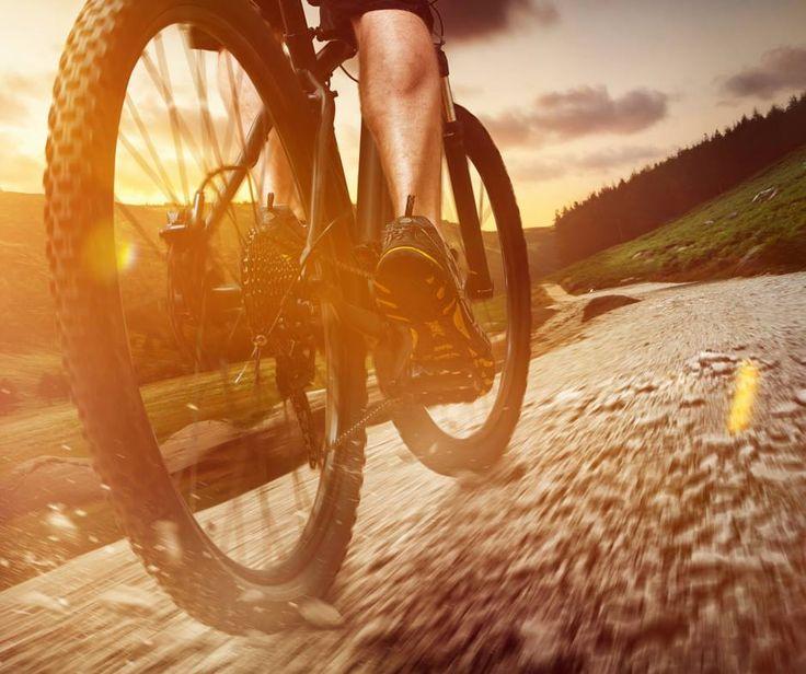 Fani Dacia, vă place muntele? Dar ciclsmul? Dacă răspunsul este da pentru ambele, atunci avem evenimentul perfect pentru voi: http://www.ridersclub.ro/en/cycling-race/lupii-dacilor-trofeul-muscelului-2015#route