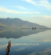 Dal Lake in Srinagar #Photocontest