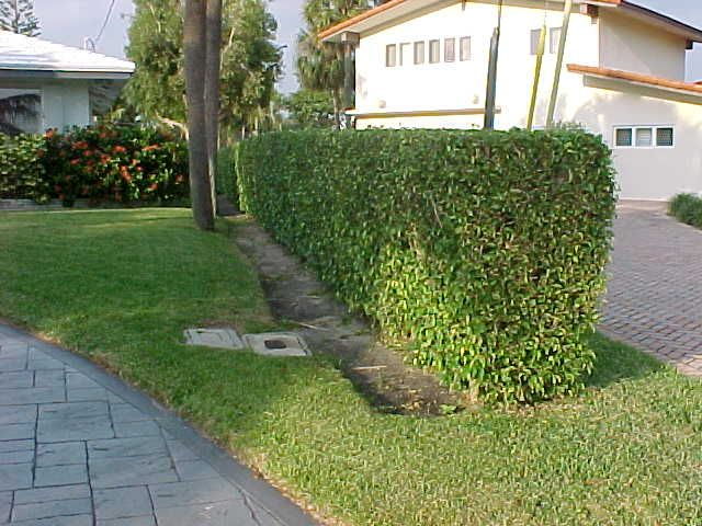 how to trim edge of lawn manually