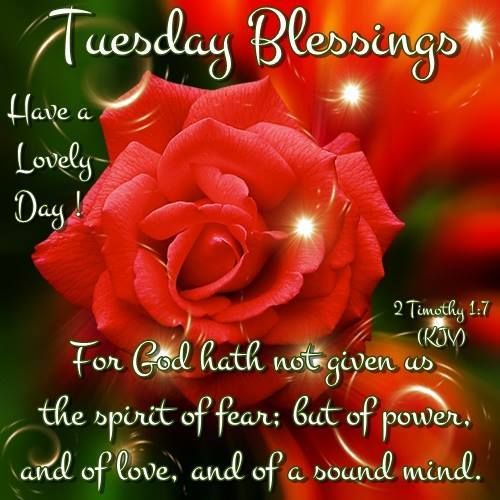 259 best images about Mon.& Tues. Blessings on Pinterest