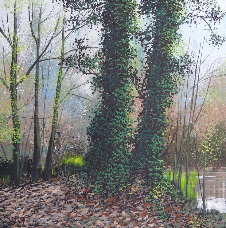 Autumn Woodland Stotfold