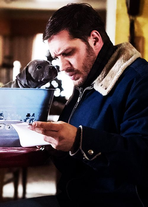 heartfulloffandoms: Favourite Tom Hardy images [16/?]