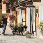 Hundeerziehung im Urlaub – vorbei mit dem Kampf an der Leine, trainieren Sie mit Ihrem Hund vom 17. - 19. Okober in der Residenz Gruber - www.hundeurlaub.at